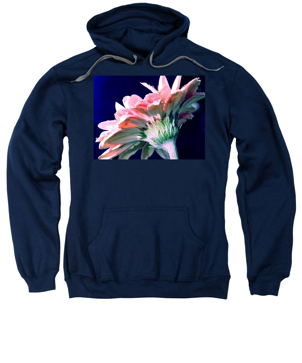 Gerbera Daisy Sweatshirt featuring the photograph Bathing In Moonlight by Rory Sagner