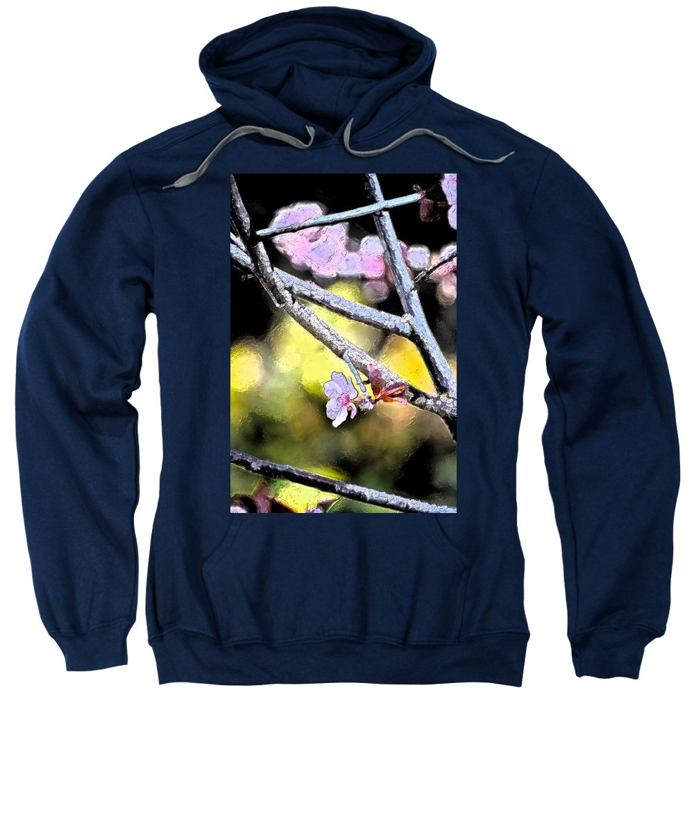 Tree Sweatshirt featuring the photograph Color 62 by Pamela Cooper