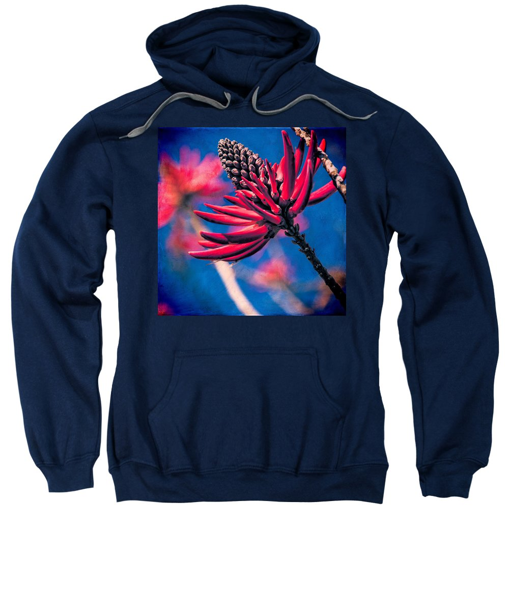 Floral Sweatshirt featuring the photograph Coral Tree Flower by Chris Lord