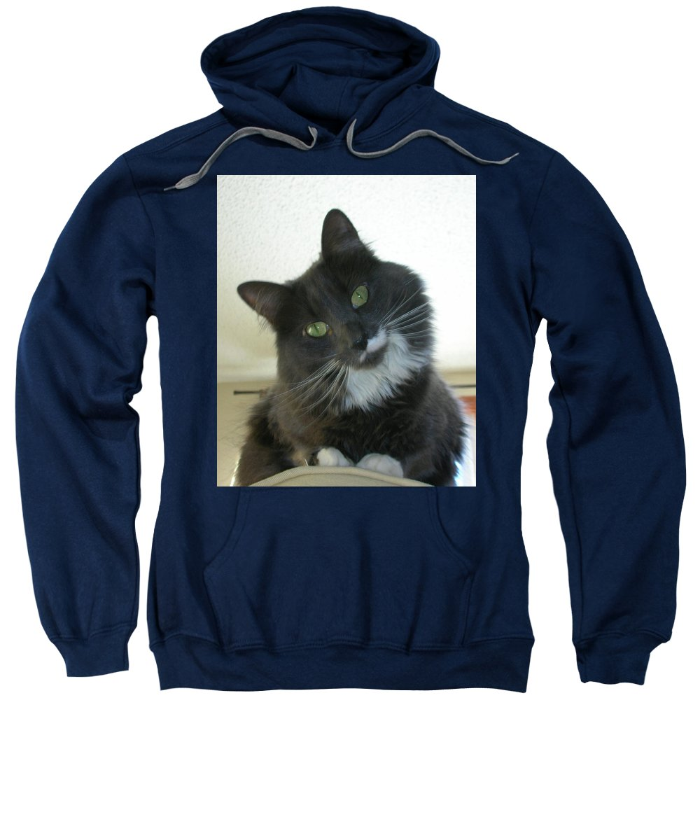 Cat Sweatshirt featuring the photograph Corky 0124 by Guy Whiteley