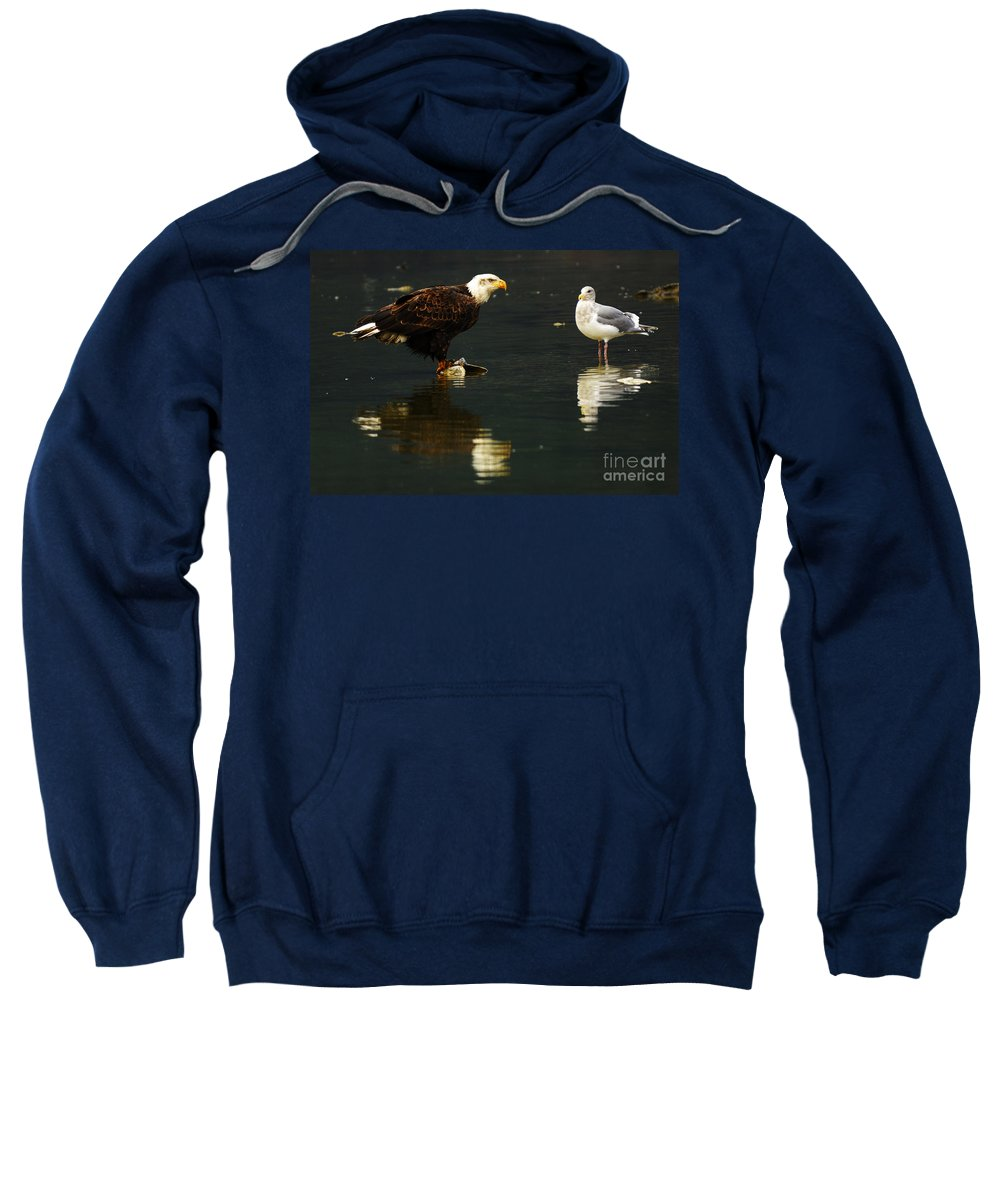 Eagle Sweatshirt featuring the photograph Fishing Buddies by Bob Christopher