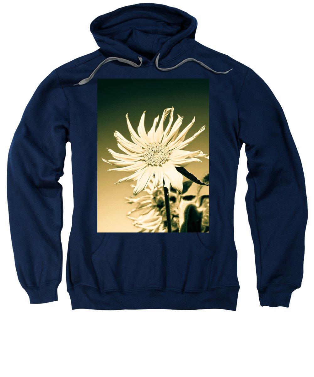 Hippy Sweatshirt featuring the photograph Flower Power by Steve McKinzie