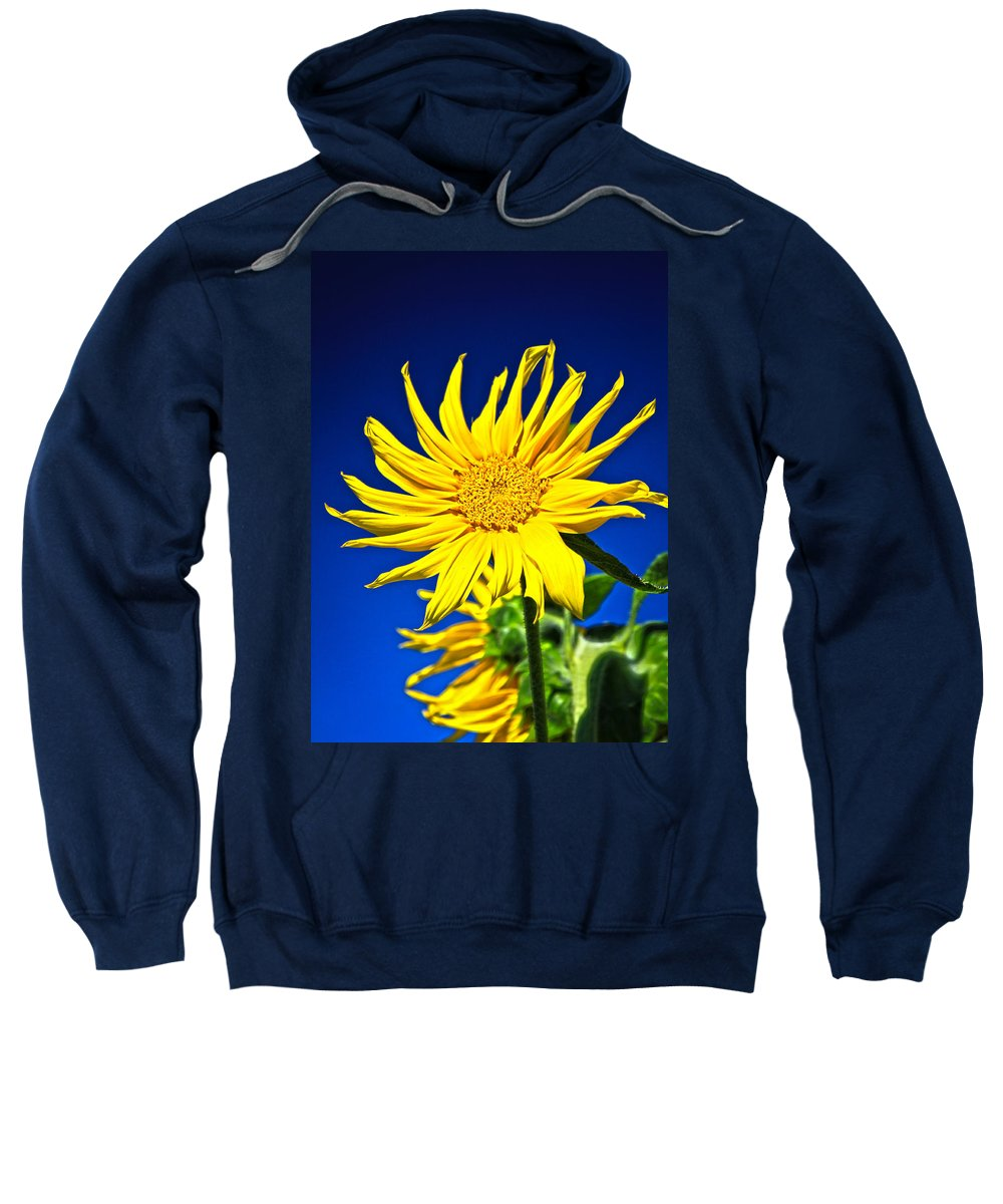 Hippy Sweatshirt featuring the photograph Here Comes The Sun by Steve McKinzie