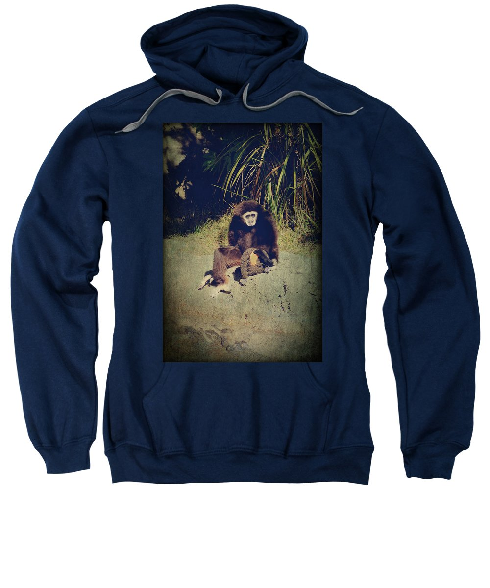 Primates Sweatshirt featuring the photograph I Need A Hug by Laurie Search