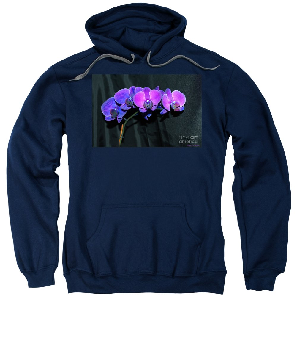 Flowers Sweatshirt featuring the photograph Indigo Mystique Orchids by Donna Brown