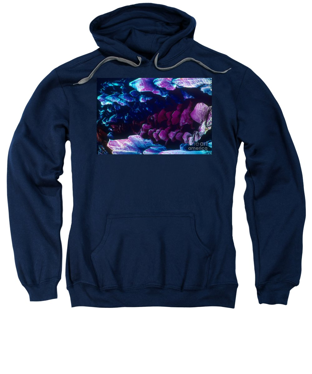 Polarized Light Micrograph Sweatshirt featuring the photograph L. Histidine Crystals by M. I. Walker