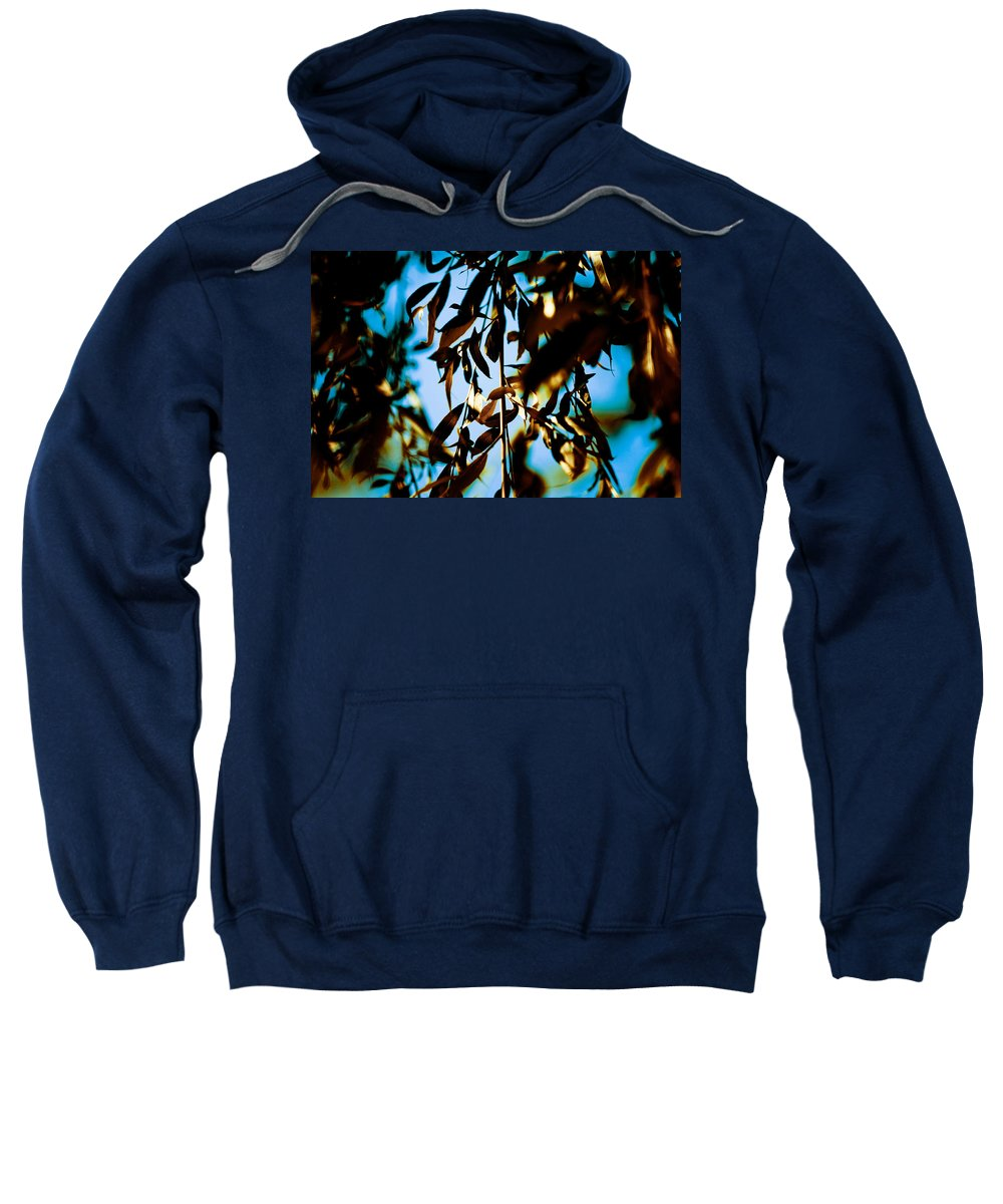 Leaves Sweatshirt featuring the photograph Leaves And Sky by Olivier De Rycke