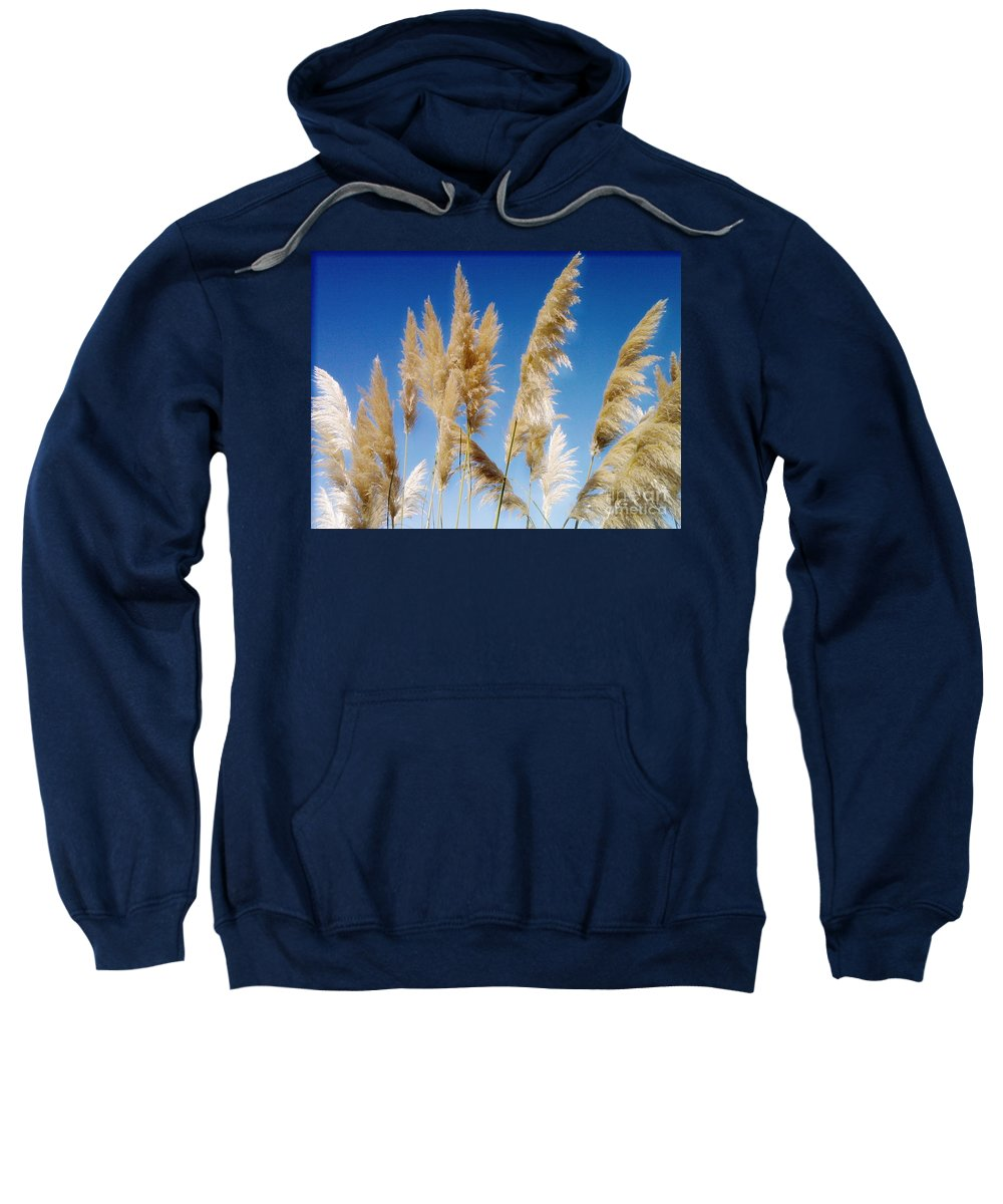 Pampas Sweatshirt featuring the photograph Of Sun And Sky And Wind 2 by Rory Sagner