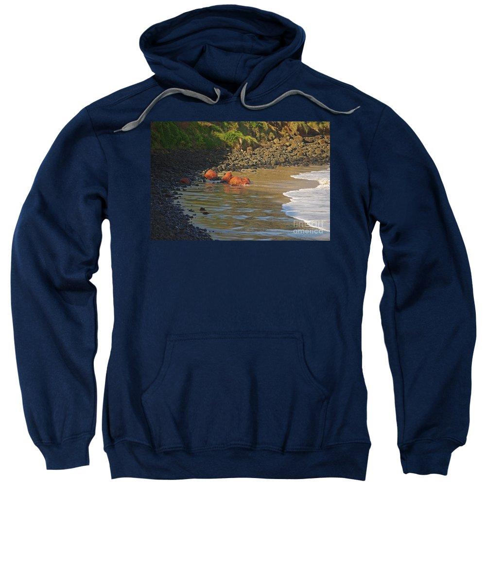 Blair Stuart Sweatshirt featuring the photograph Phillip Island 2 by Blair Stuart