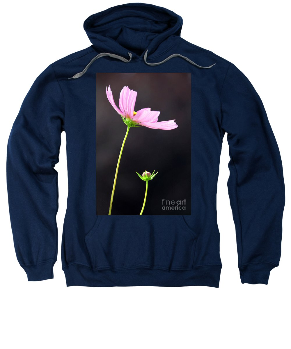 Cosmos Sweatshirt featuring the photograph Pink Cosmos by Dana Kern
