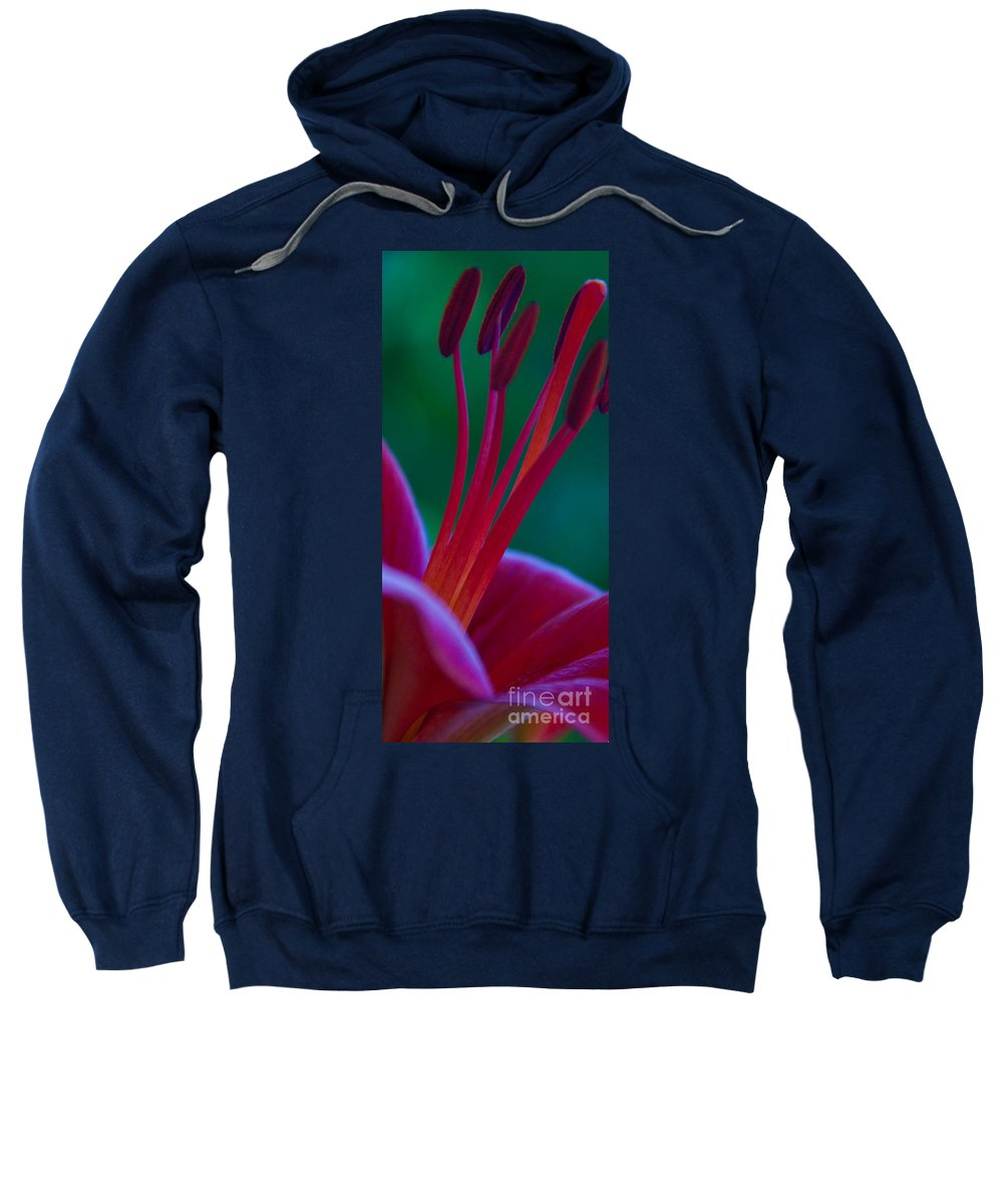 Lily Flower Sweatshirt featuring the photograph Pink Lily by Dana Kern