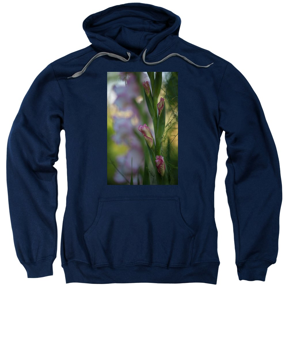 Flower Sweatshirt featuring the photograph Stalk Of Light by Mike Reid