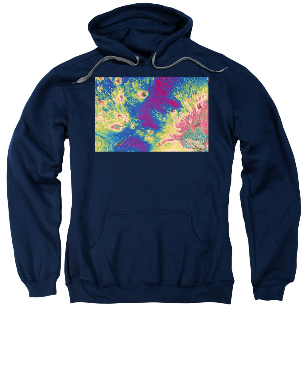 Science Sweatshirt featuring the photograph Stearic Acid by Michael W. Davidson