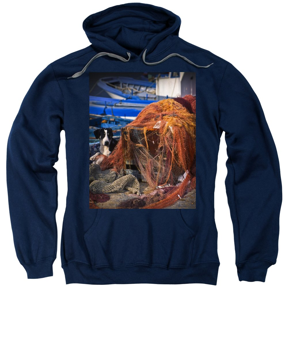 Dog Sweatshirt featuring the photograph The Fisherman's Dog II by Michele Mule'