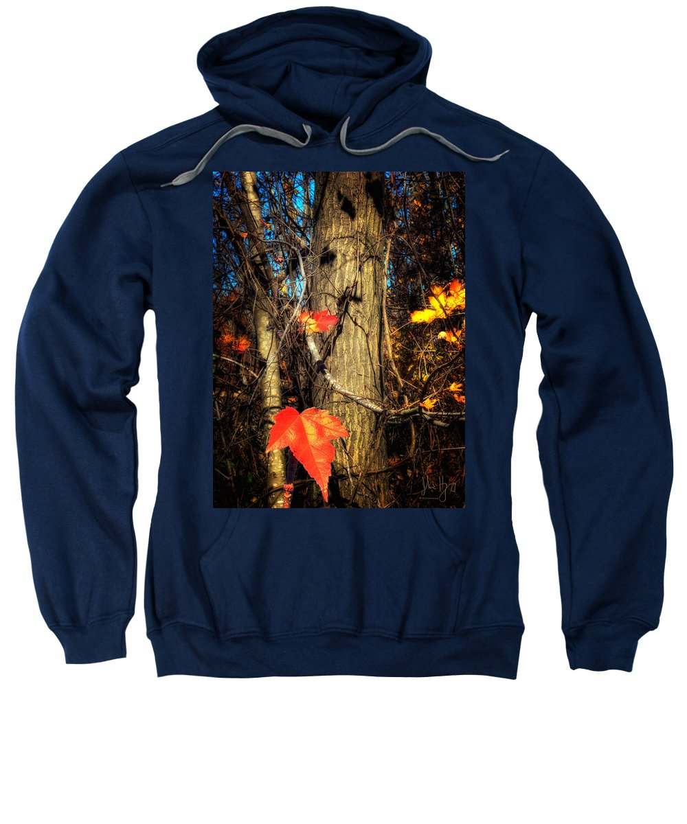 Xdop Sweatshirt featuring the photograph The Show Is Almost Over Folks by John Herzog