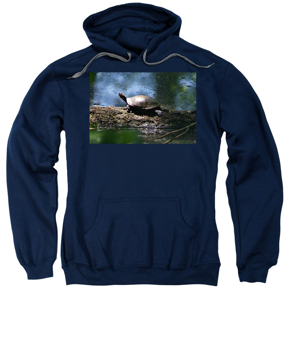 Horn Pond Sweatshirt featuring the photograph Turtle I by Joe Faherty
