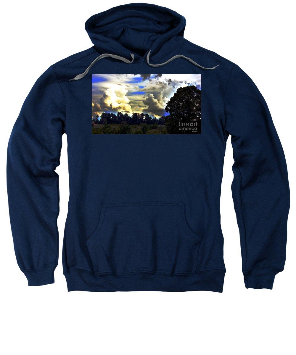 Underdog Sweatshirt featuring the photograph Underdog by Maria Urso