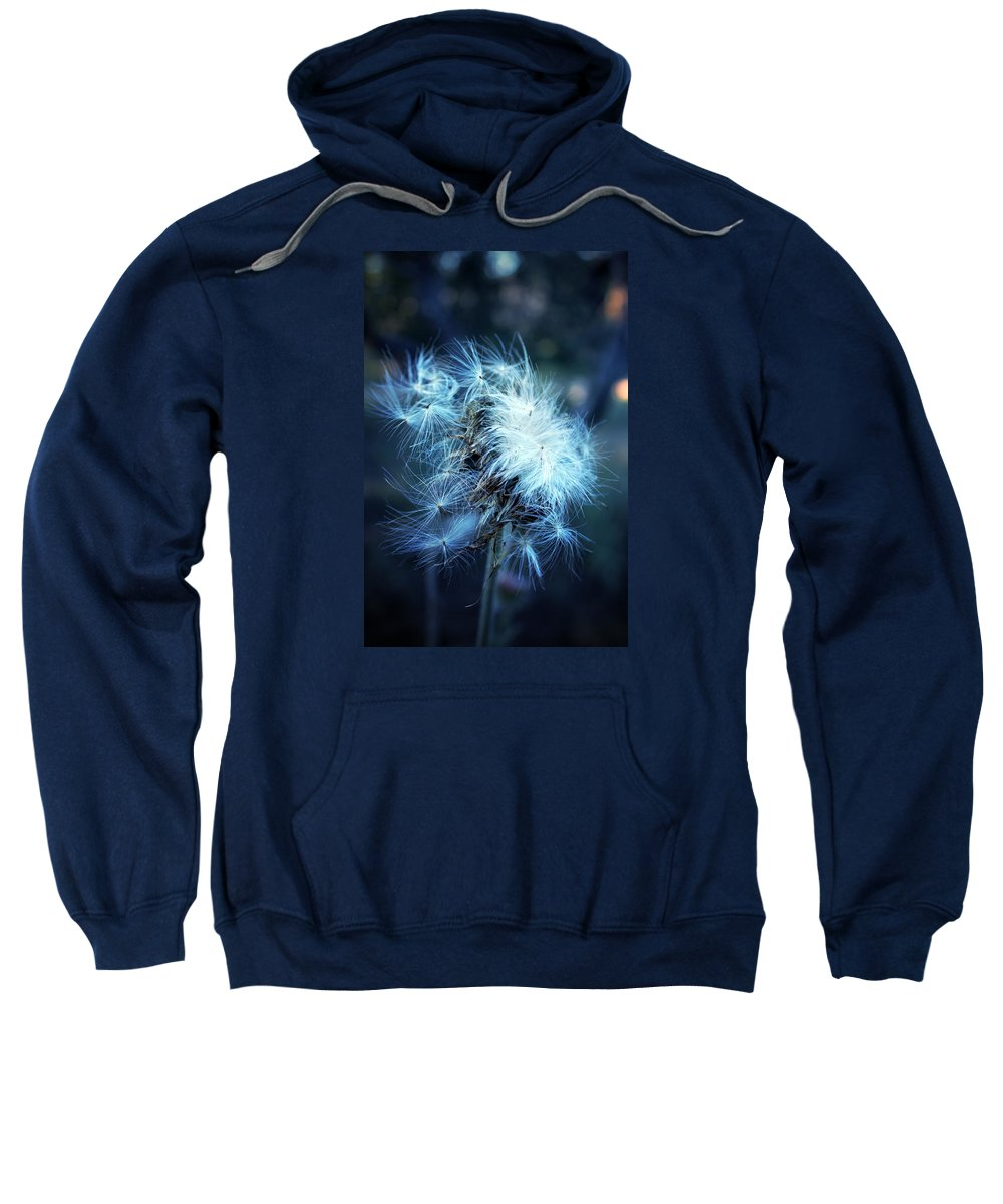 Purple Thistle Sweatshirt featuring the photograph Voice Of A Thistle by Trish Mistric