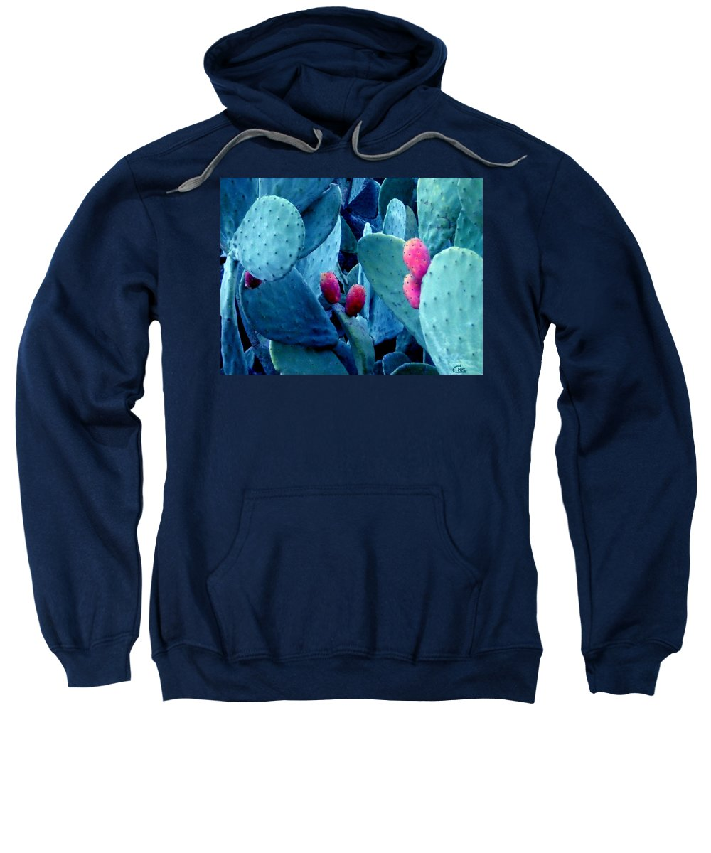 Colette Sweatshirt featuring the photograph Winter In Spain by Colette V Hera Guggenheim