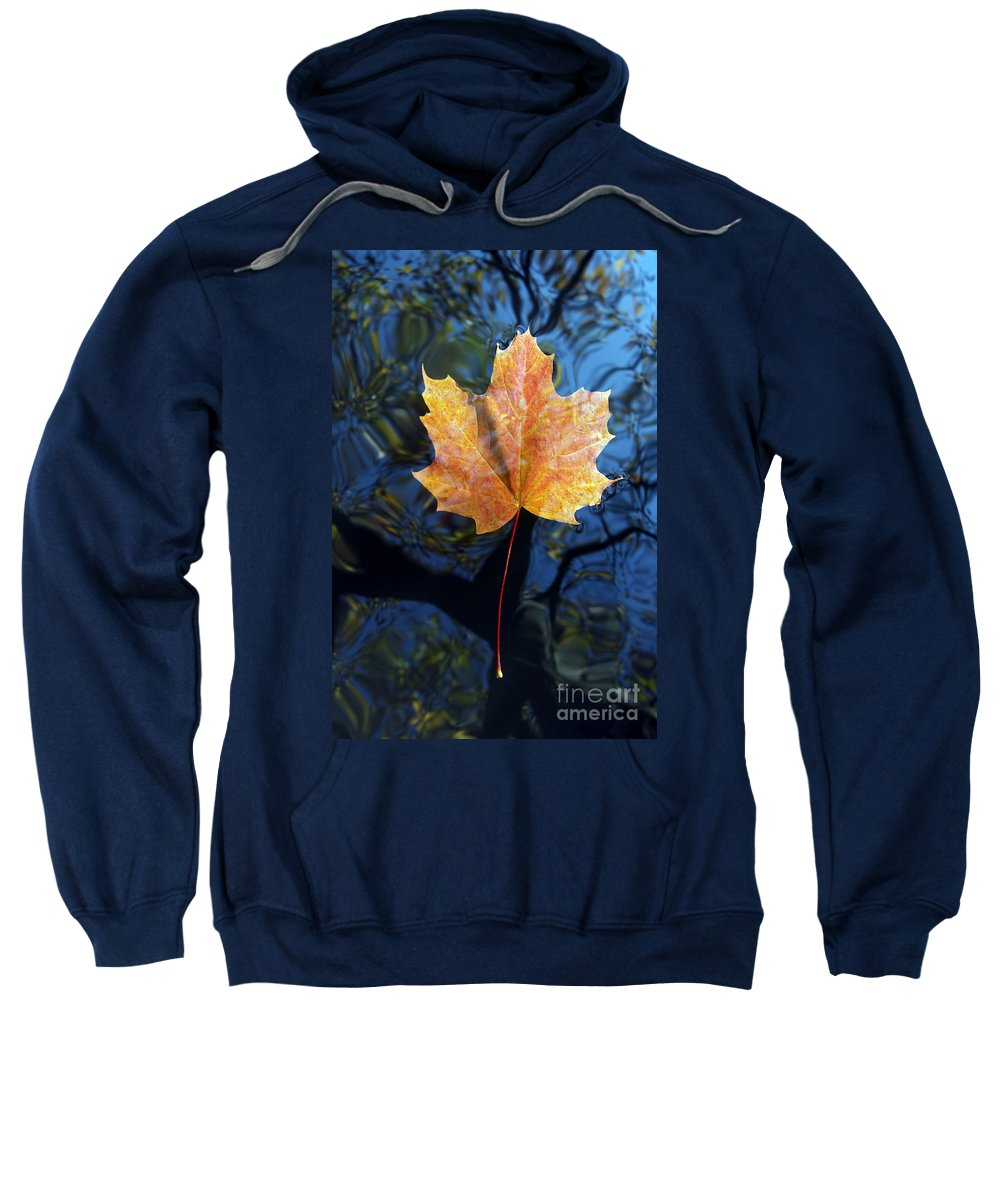 Leaf Sweatshirt featuring the photograph Autumn Leaf On The Water by Michal Boubin