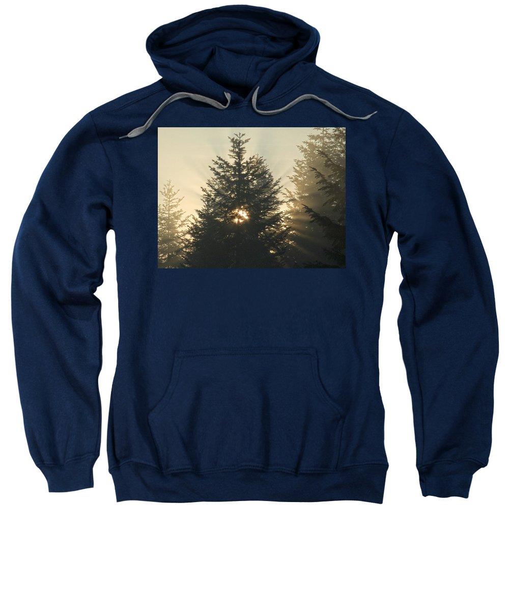 Nature Sweatshirt featuring the photograph Dawn by Daniel Csoka