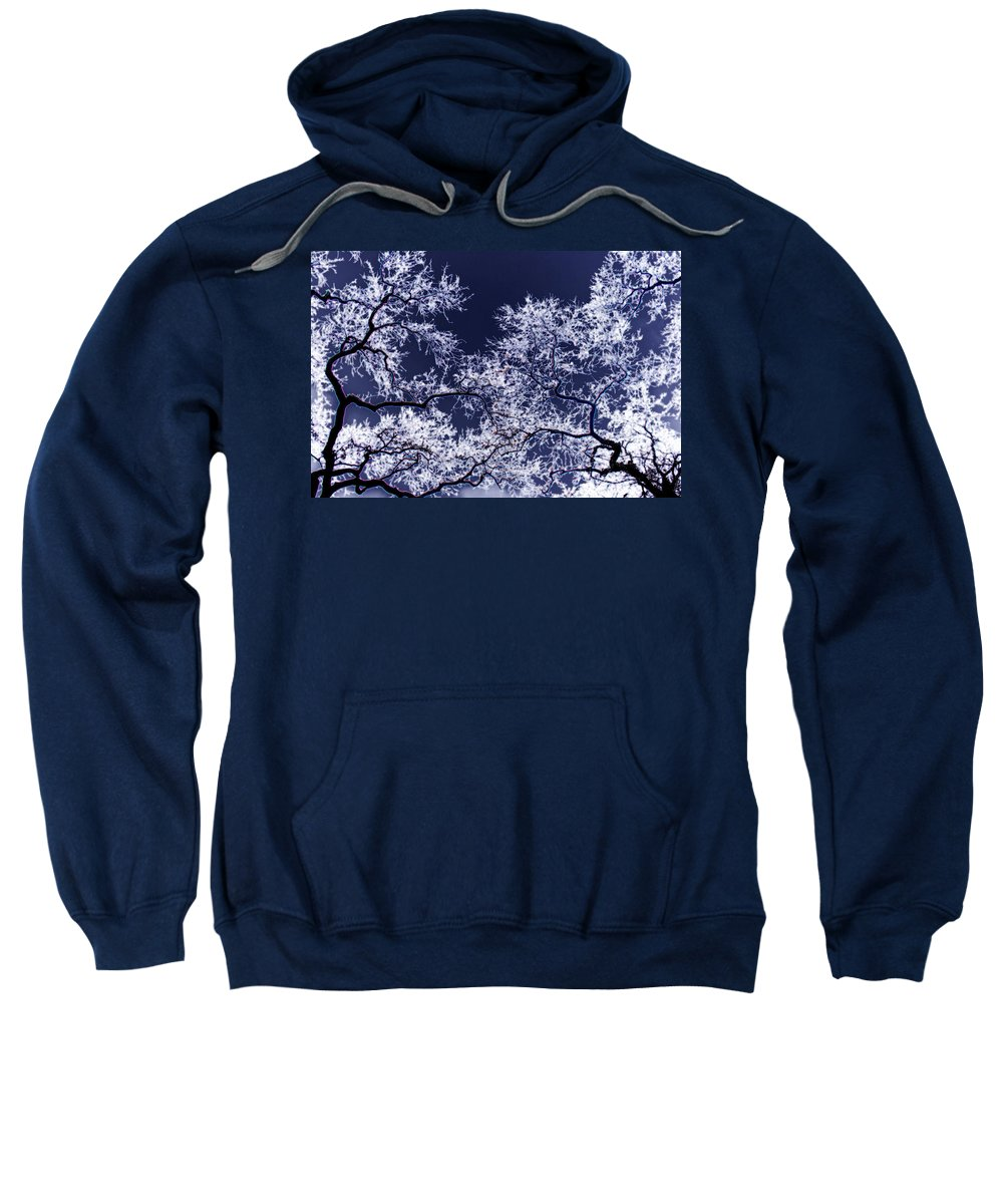 Tree Sweatshirt featuring the photograph Tree Fantasy 17 by Lee Santa
