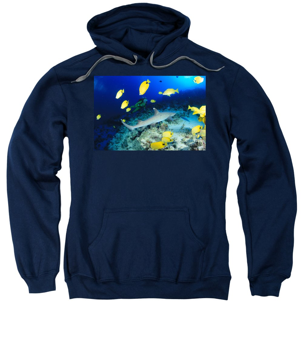 Adventure Sweatshirt featuring the photograph Whitetip Reef Shark by Dave Fleetham - Printscapes