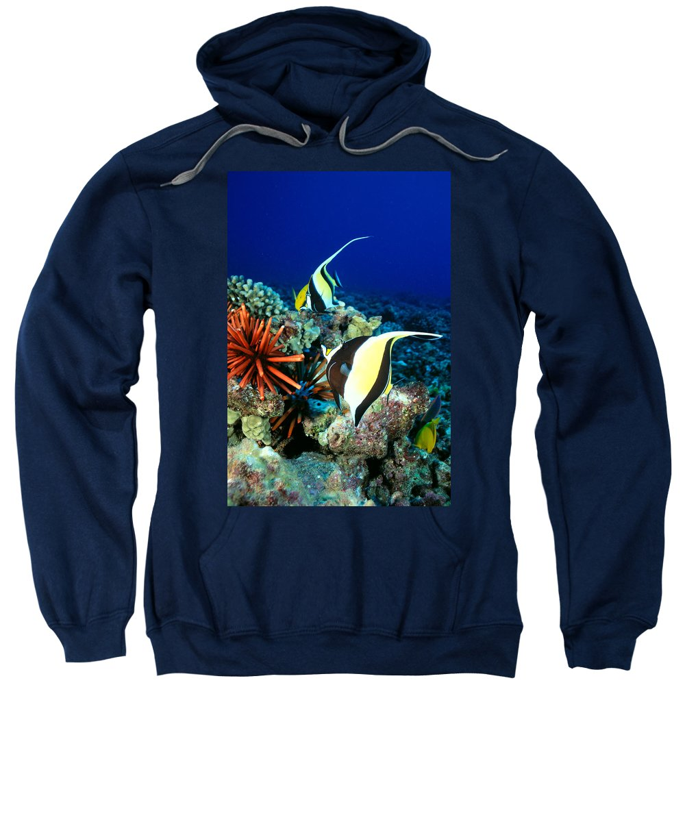 30-pfs0056 Sweatshirt featuring the photograph Hawaiian Reef Scene by Dave Fleetham - Printscapes