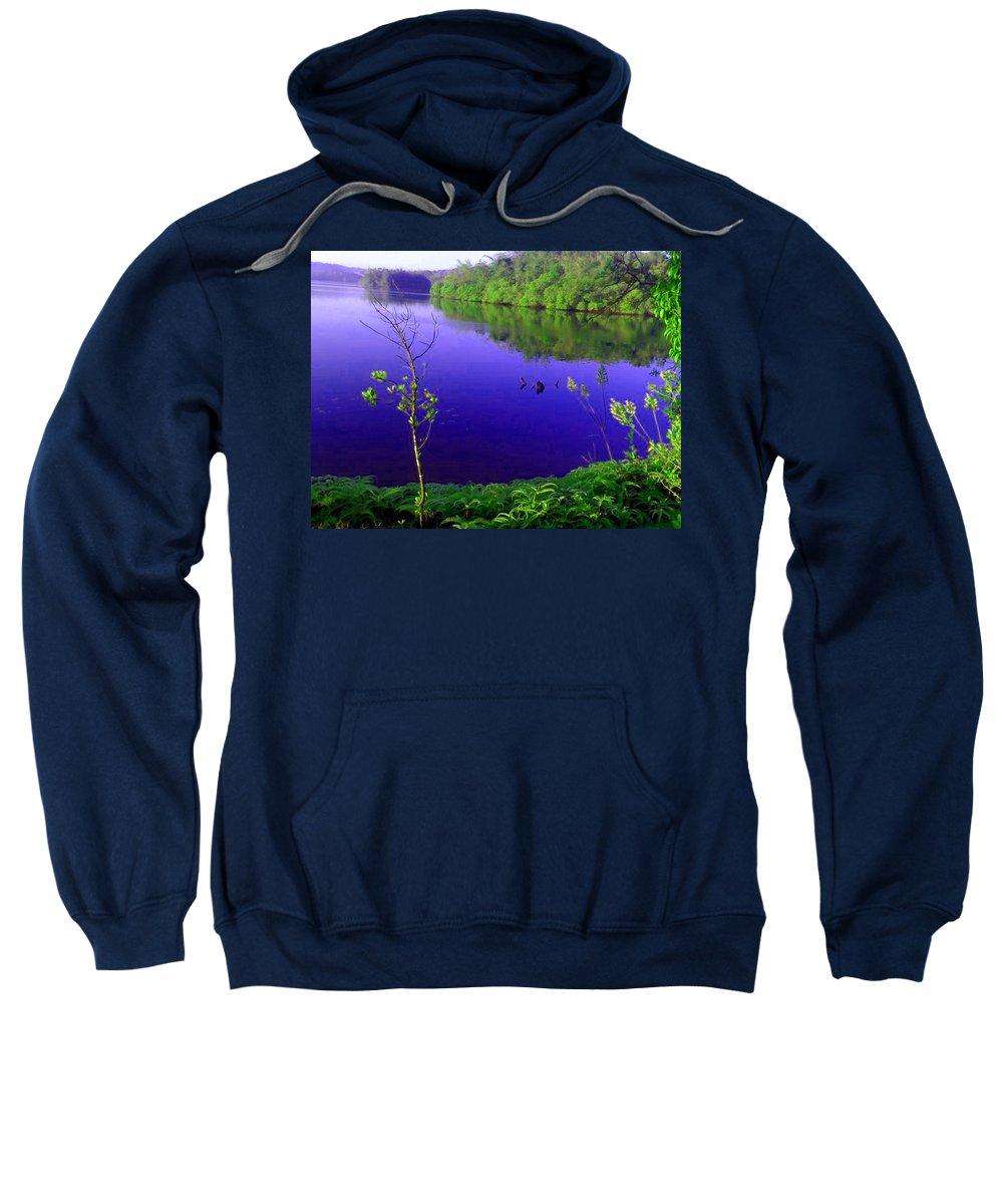 Nature Sweatshirt featuring the photograph Nature by Sainuddeen Alanthi
