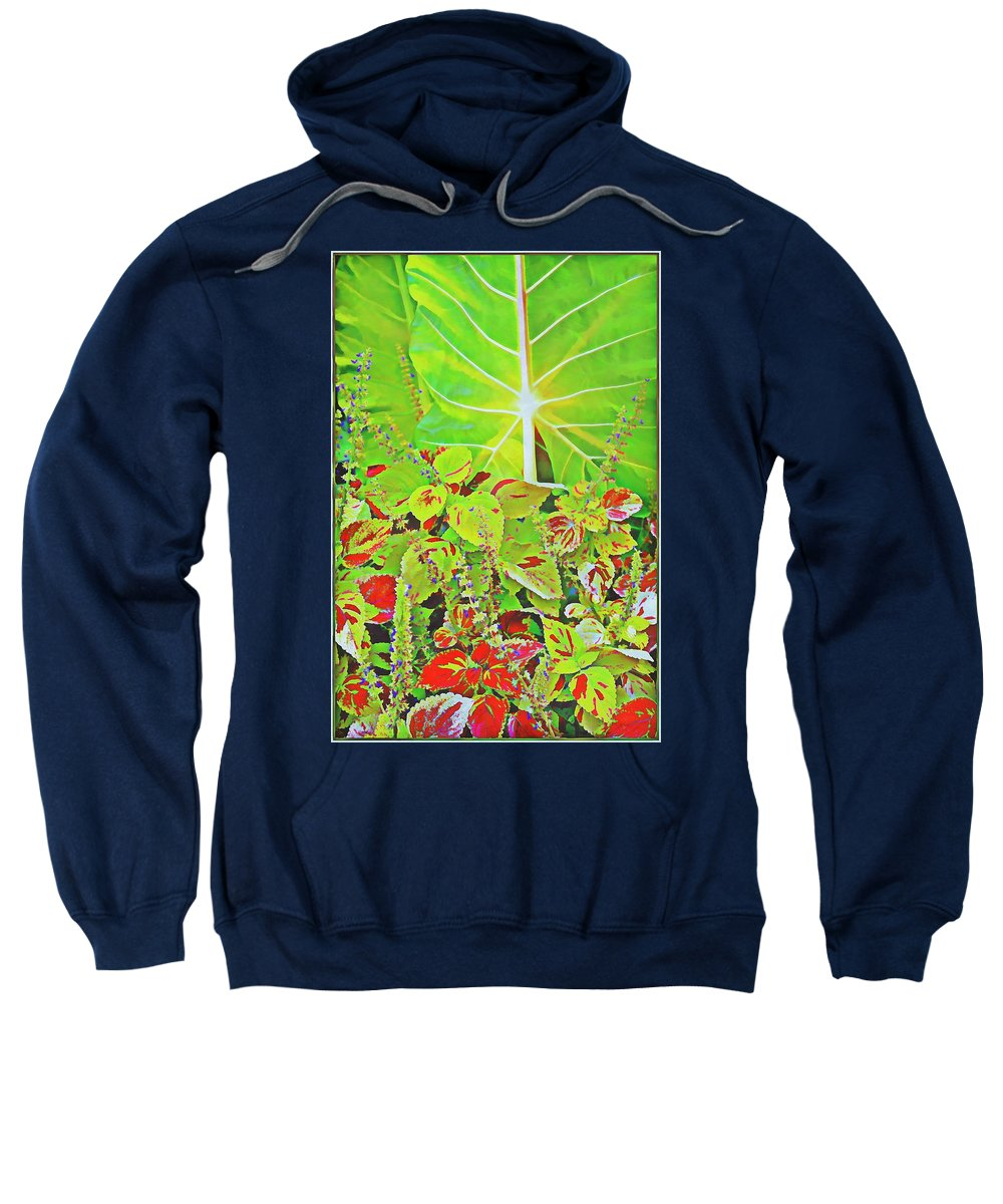 Palm Sweatshirt featuring the photograph A Tropical Bouquet by Mindy Newman