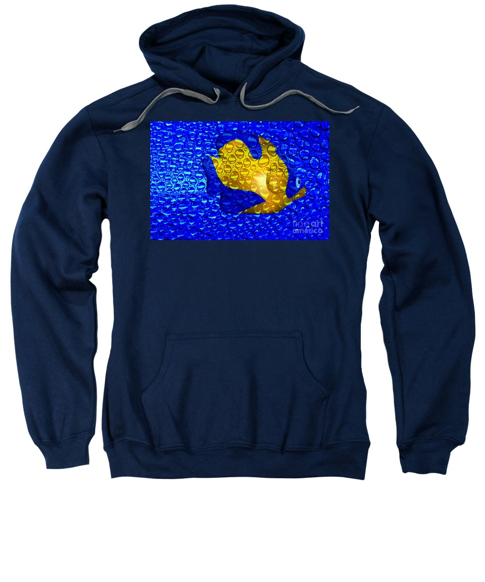 Clay Sweatshirt featuring the photograph Aquarium by Clayton Bruster