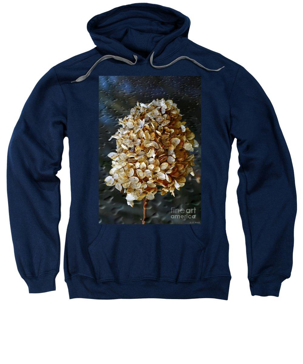 Flower Sweatshirt featuring the photograph Beauty Of Old by Deborah Benoit