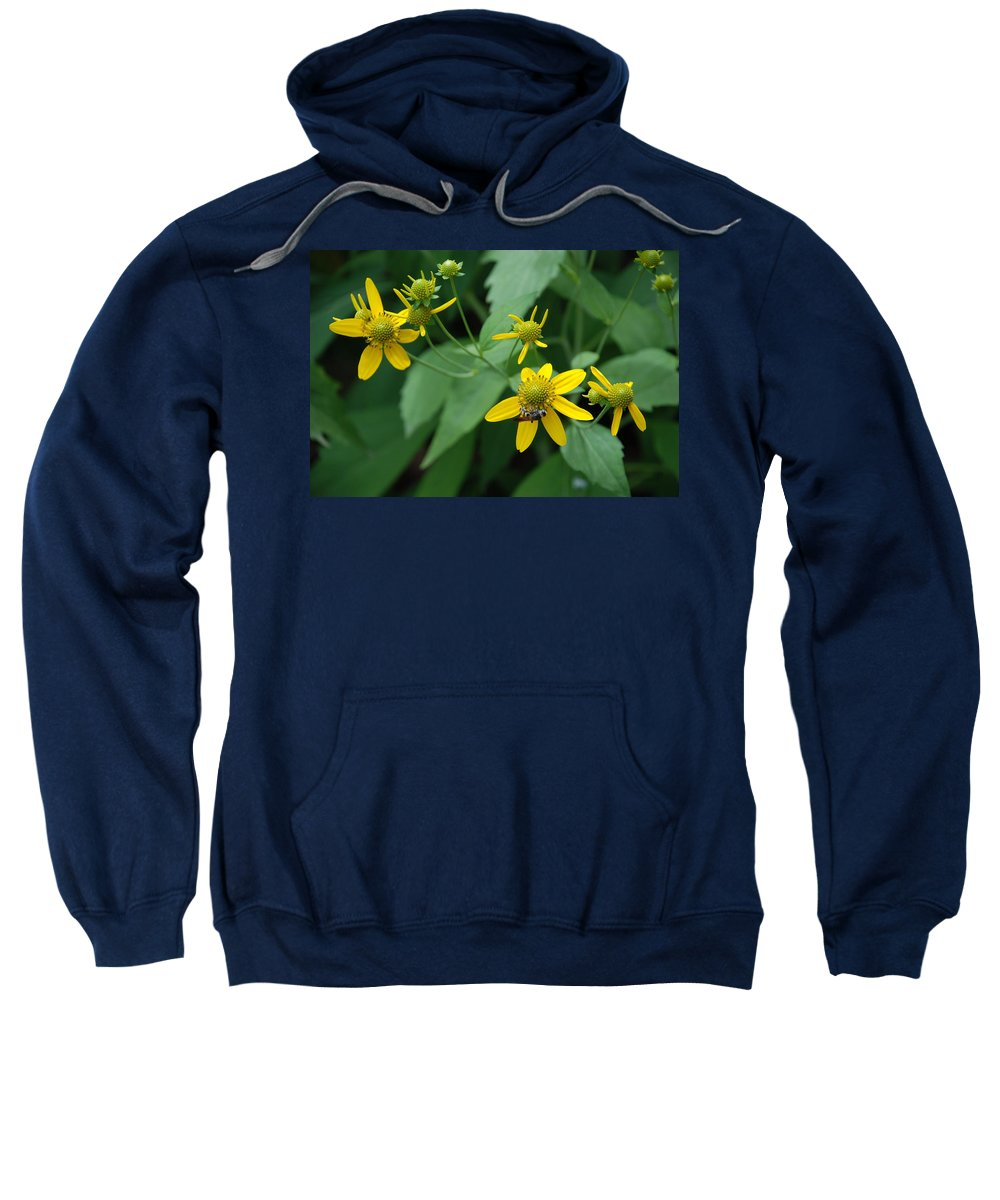 Macro Sweatshirt featuring the photograph Bee On A Flower by Rob Hans