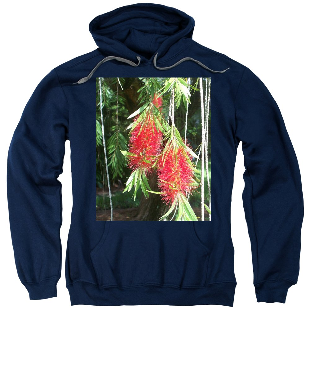 Florida Sweatshirt featuring the photograph Bittersweet Bloom II by Chris Andruskiewicz