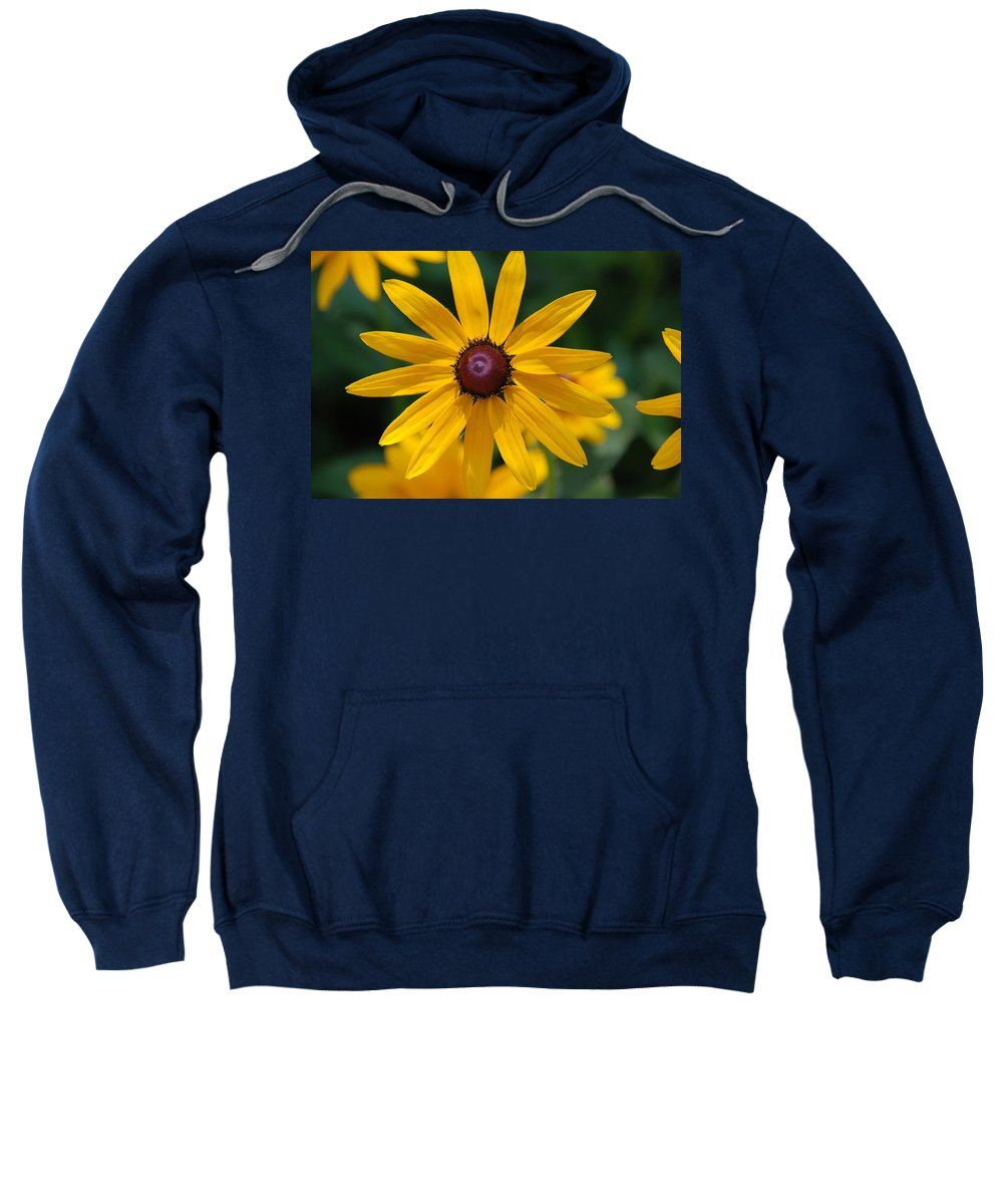 Flowers Sweatshirt featuring the photograph Black Eyed Susan by Susanne Van Hulst