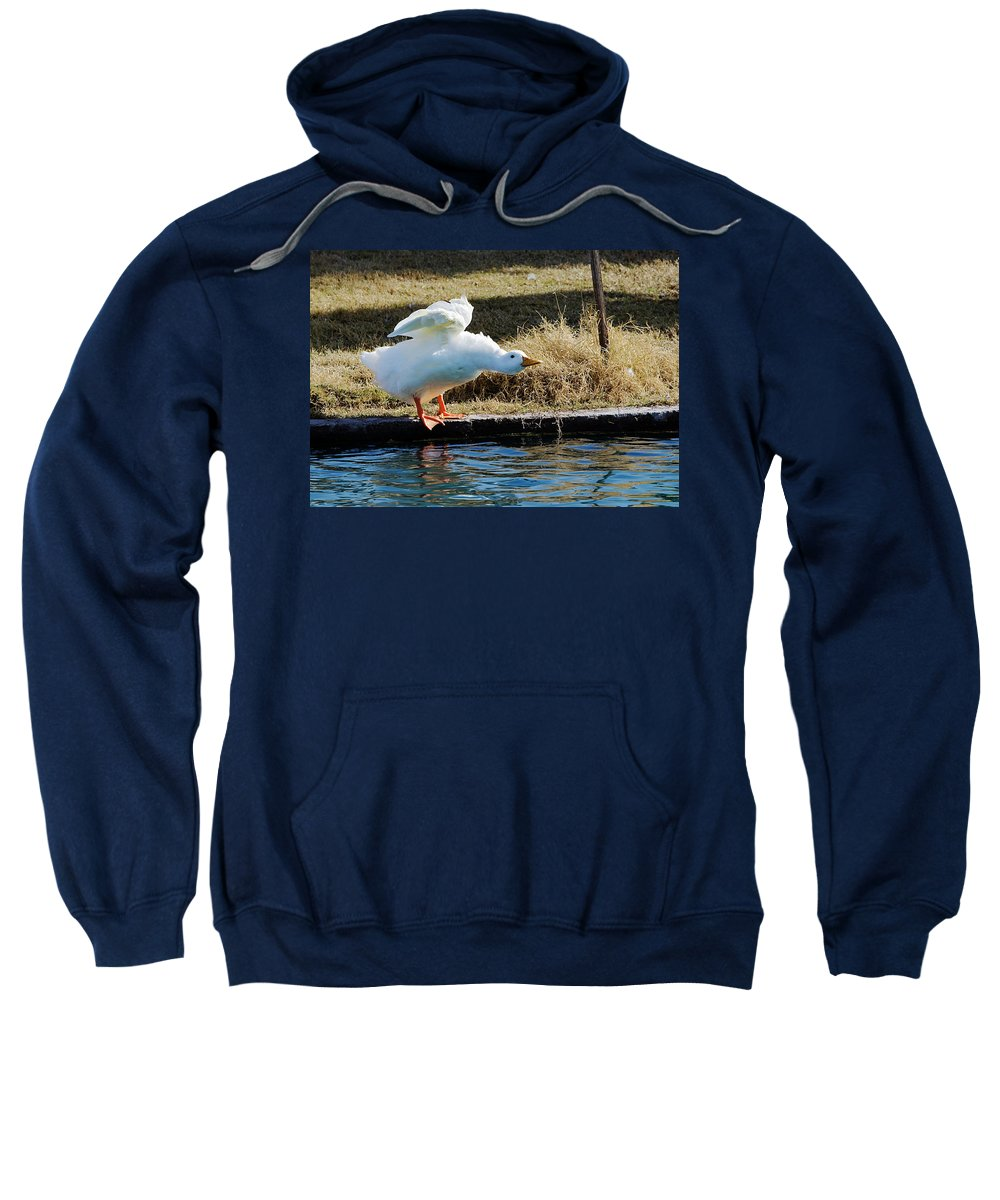 Goose Sweatshirt featuring the photograph Blast Off by Phyllis Denton