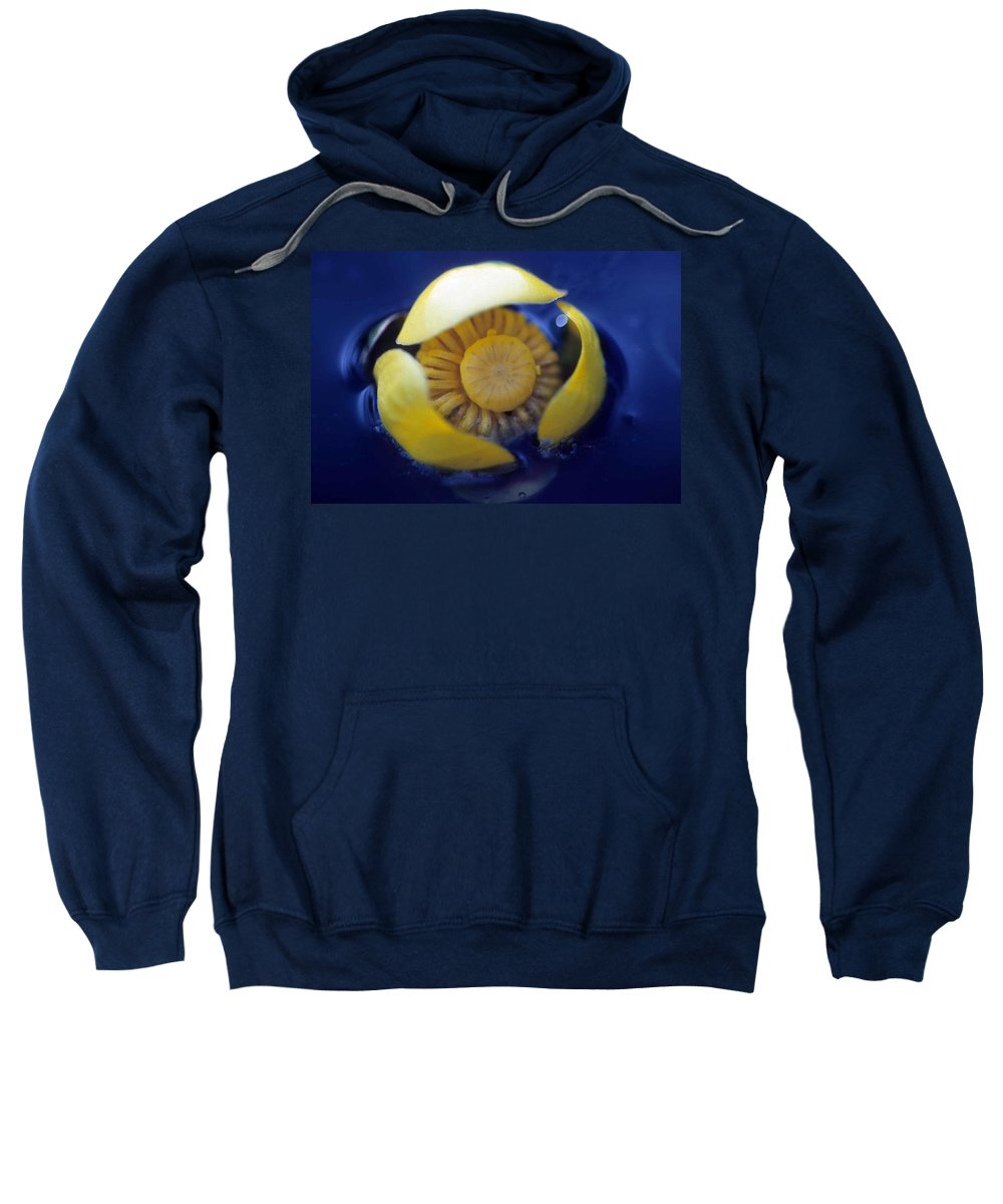 Lily Sweatshirt featuring the photograph Bull Lily by Laurie Paci