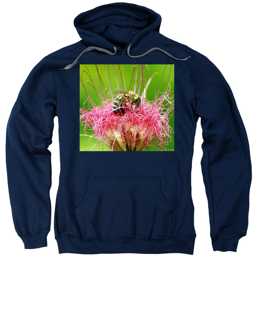 Nature Sweatshirt featuring the photograph Busy Bee by Holly Kempe