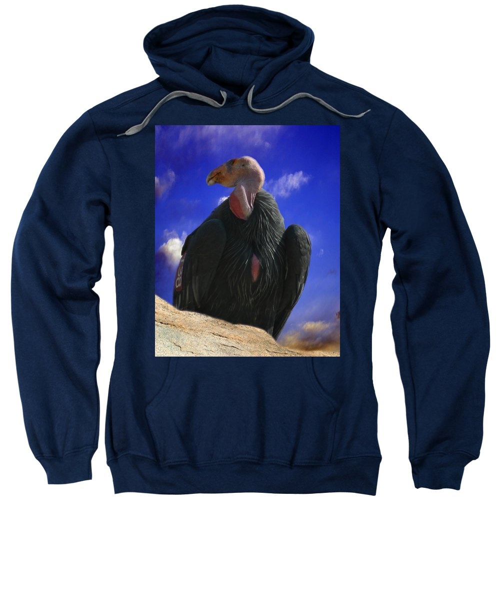 California Condor Sweatshirt featuring the photograph California Condor by Anthony Jones