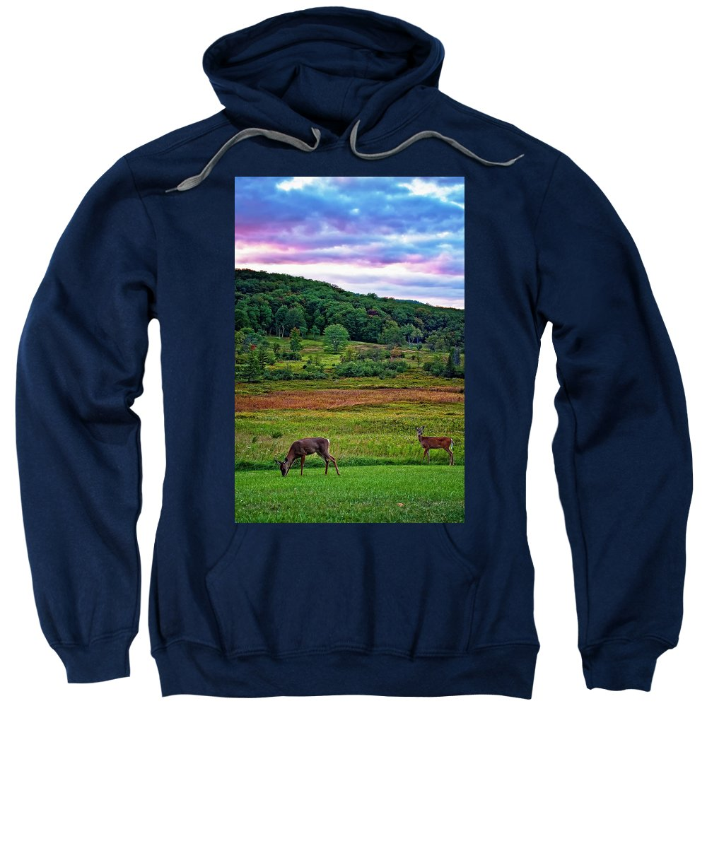 West Virginia Sweatshirt featuring the photograph Canaan Valley Evening by Steve Harrington