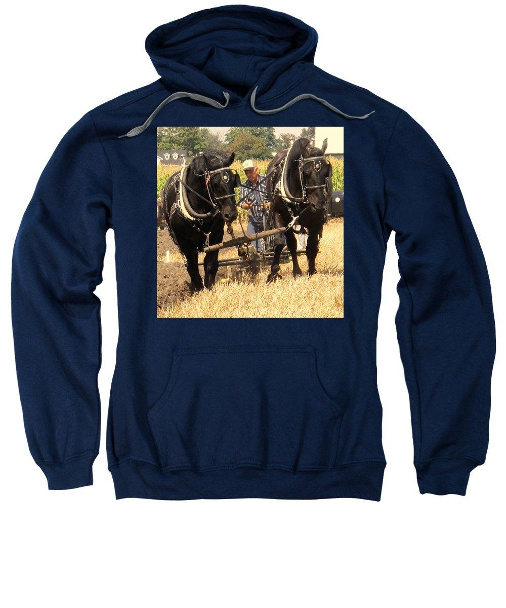 Horses Sweatshirt featuring the photograph Careful Careful by Ian MacDonald