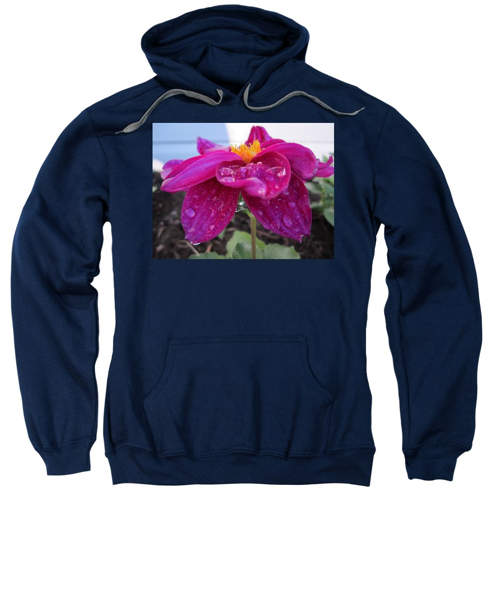 Flower Sweatshirt featuring the photograph Catch Me by N C