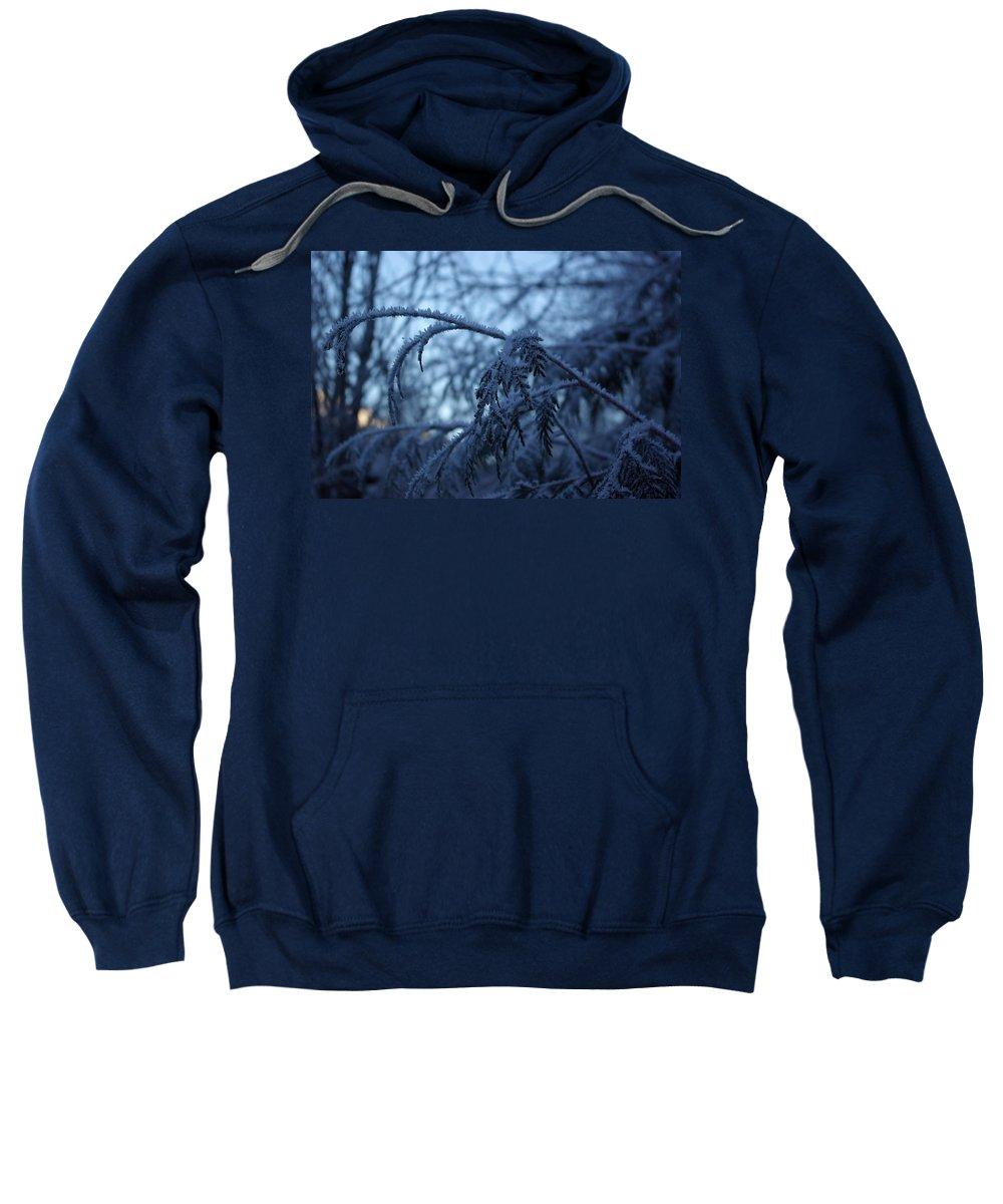 Cedar Sweatshirt featuring the photograph Cedars Of Ice by Cindy Johnston
