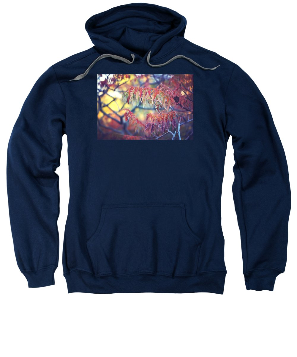 Foliage Autumn Leaves Tree Branches Sweatshirt featuring the photograph Chaotic Beauty by Becca Stauffer