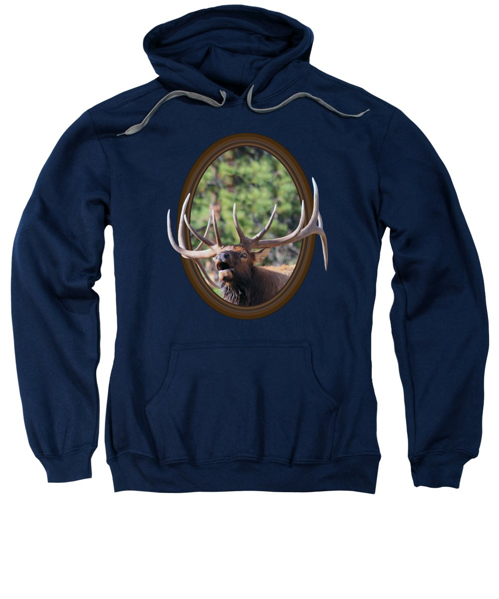 Bull Elk Sweatshirt featuring the photograph Colorado Bull Elk by Shane Bechler