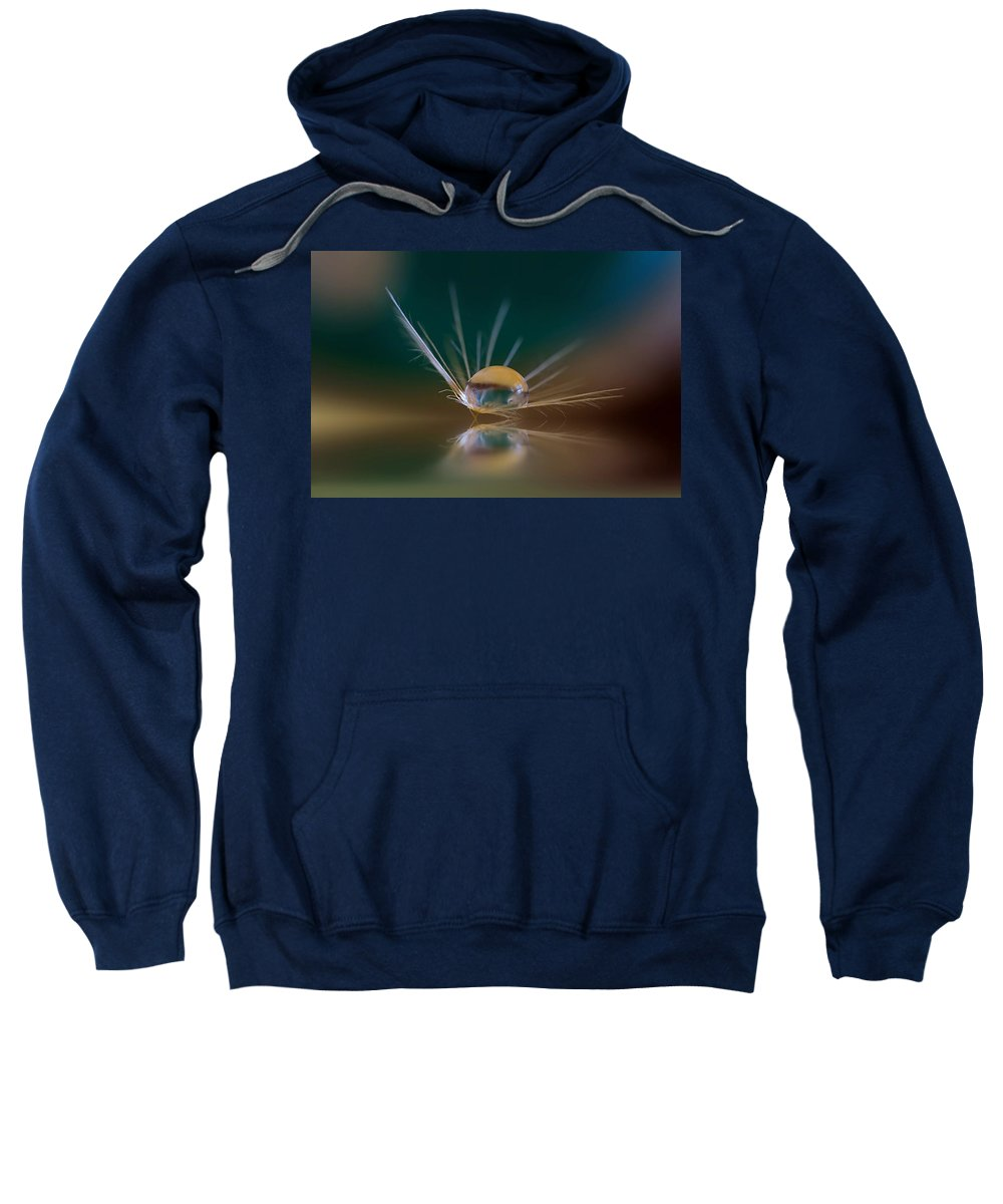Dandylion Sweatshirt featuring the photograph Coming In For Landing by Kym Clarke
