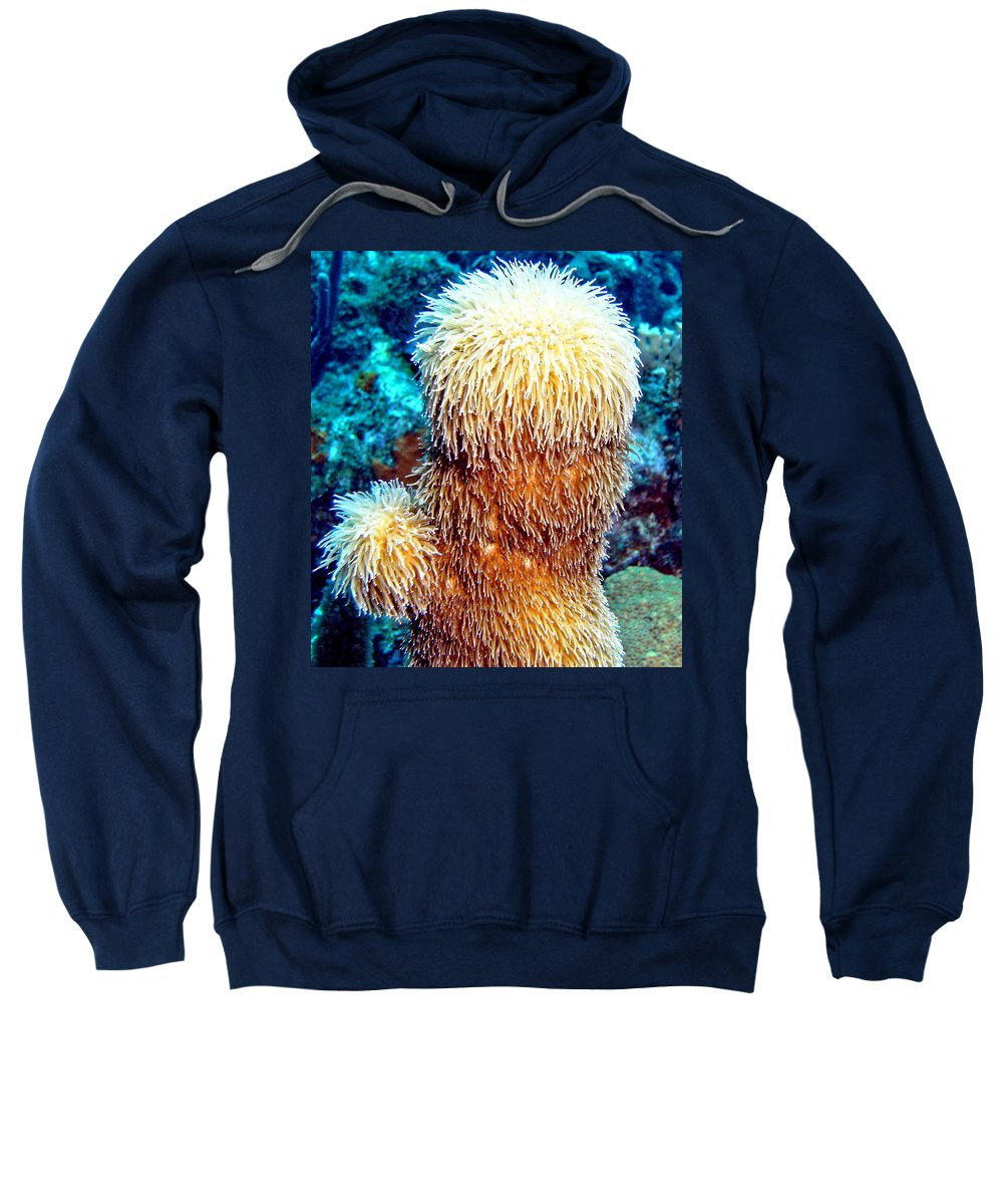 Nature Sweatshirt featuring the photograph Corky Sea Finger Coral - The Muppet Of The Deep by Amy McDaniel