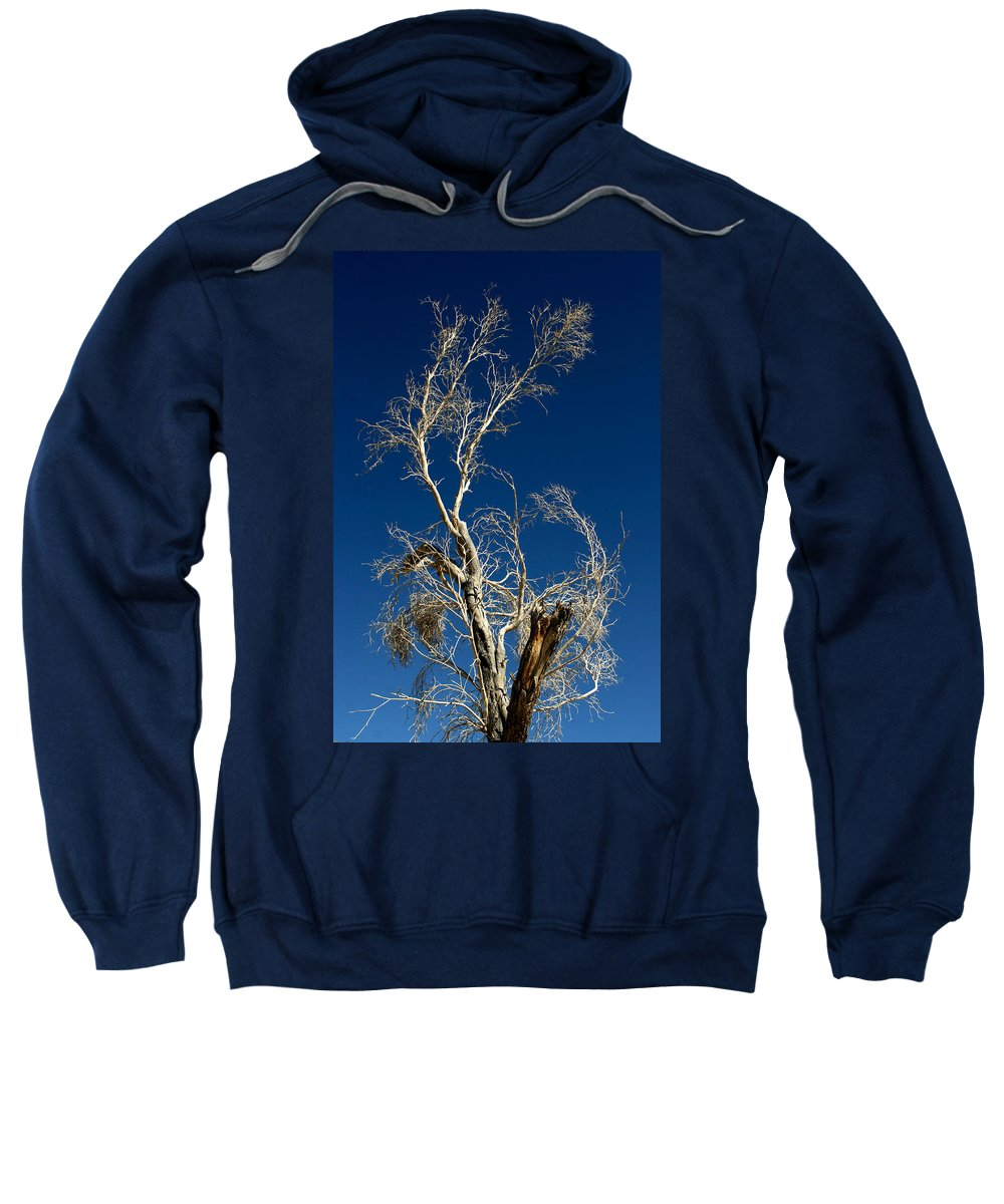 Tree Sweatshirt featuring the photograph Deep Blue White Tree by Chris Brannen