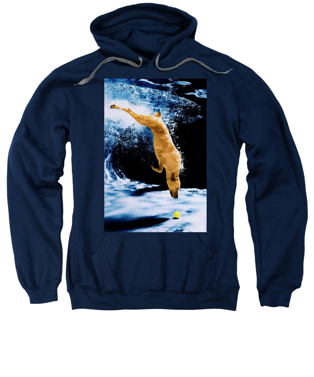 Pet Sweatshirt featuring the photograph Diving Dog Underwater by Jill Reger