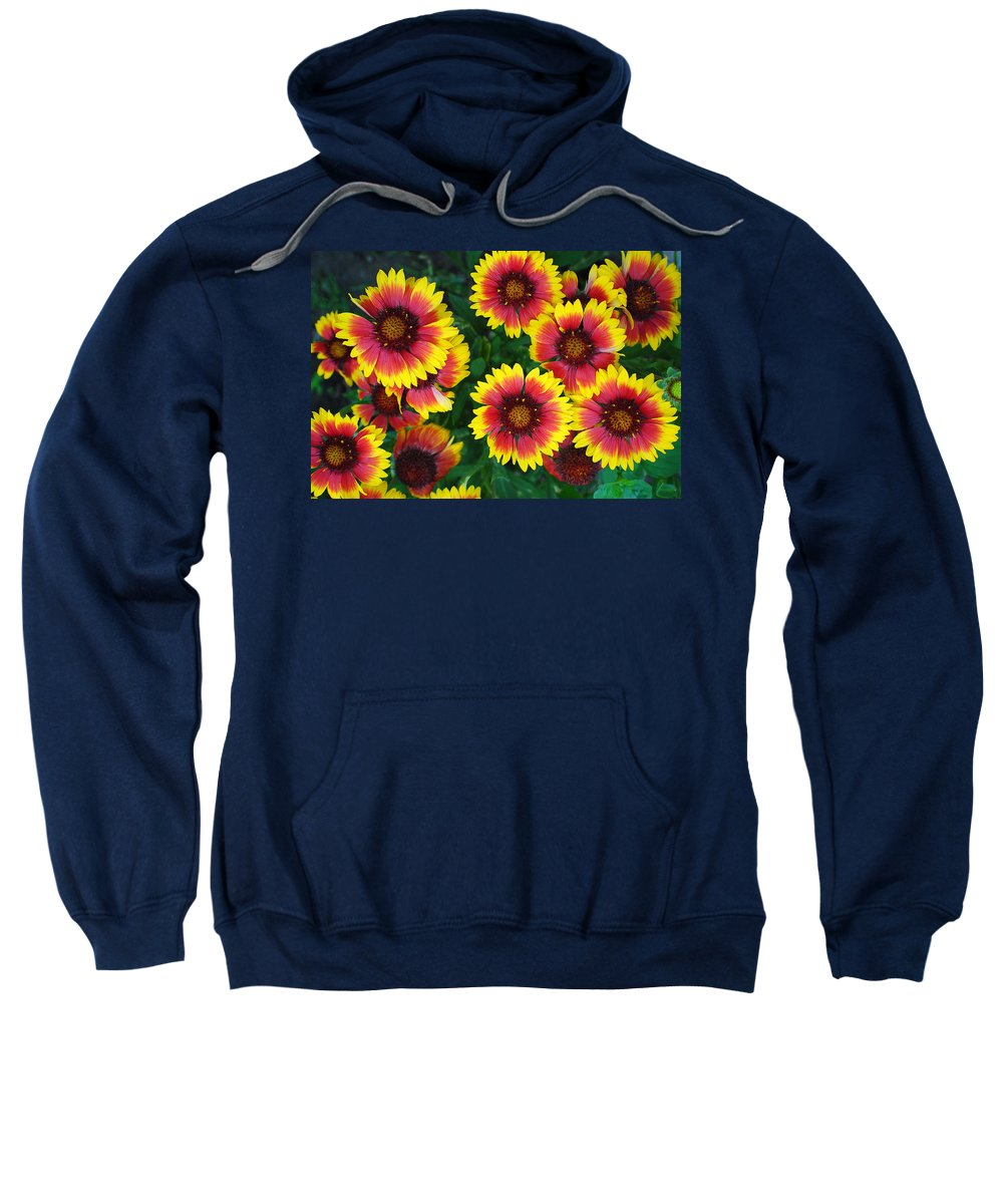 Flower Sweatshirt featuring the photograph Flower Patch by Frozen in Time Fine Art Photography
